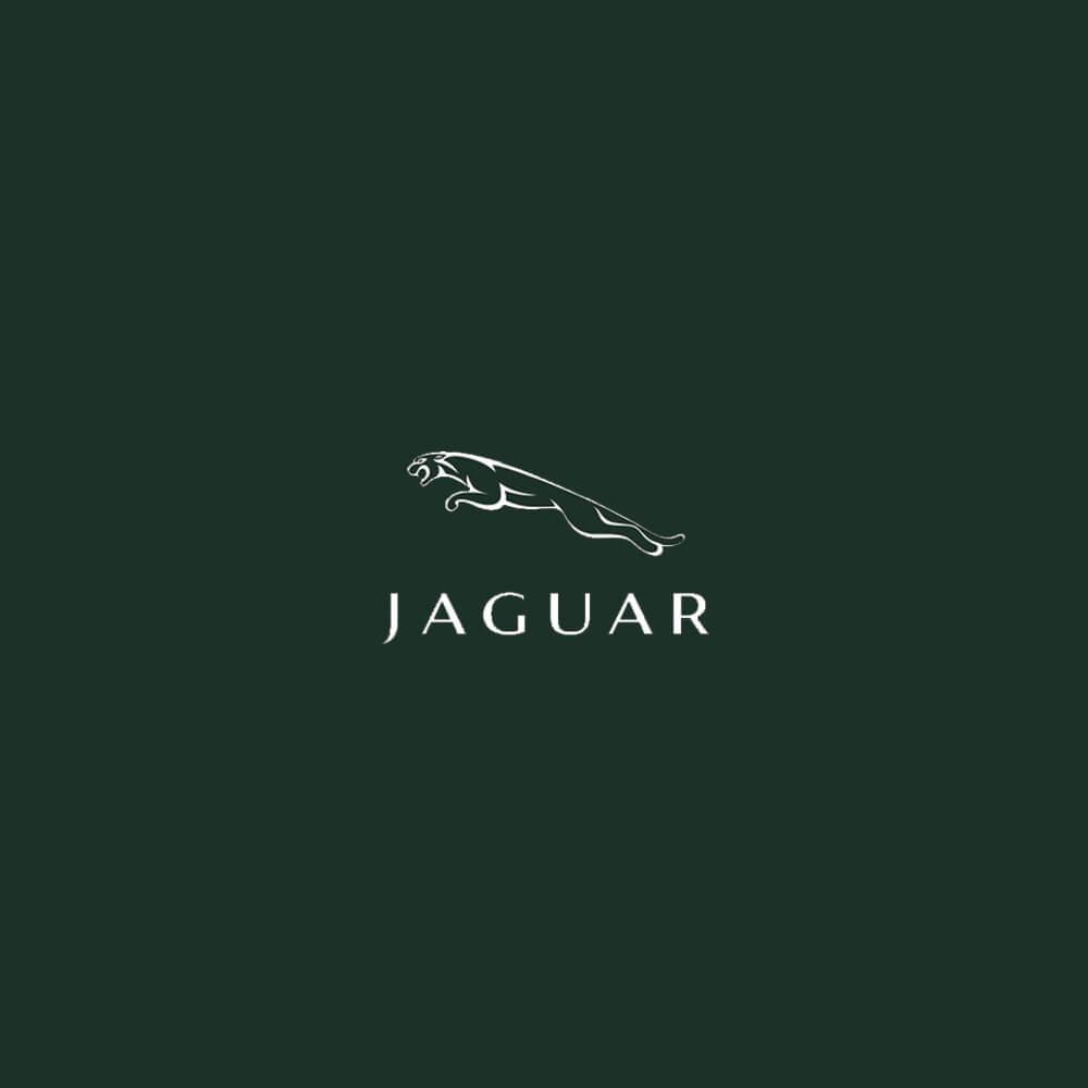 Jaguar Music Composition & Editing