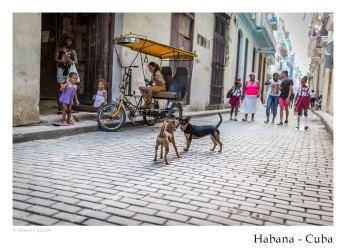 havanna_kuba