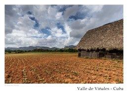vinales_kuba_58