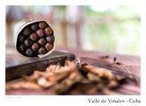 vinales_kuba_63
