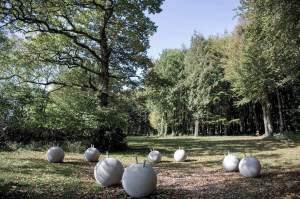 Marcus Kleinfeld, ANTIBODIES Installation view CASS Sculpture Foundation
