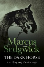 Uk cover of The Dark Horse with a rearing horse's head.
