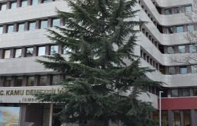 Mardinli Avukatlardan KDK'yaSigara Şikayeti