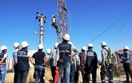 """Dicle Elektrik'in abonelik hizmetleri """"e-Devlet"""" kapısında"""