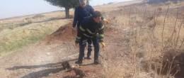 5 köpek yavrusunu çuvala  koyarak foseptik çukuruna attılar