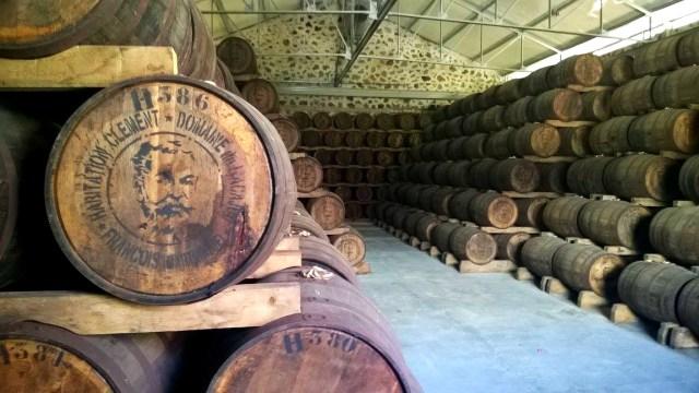 najlepszy rum