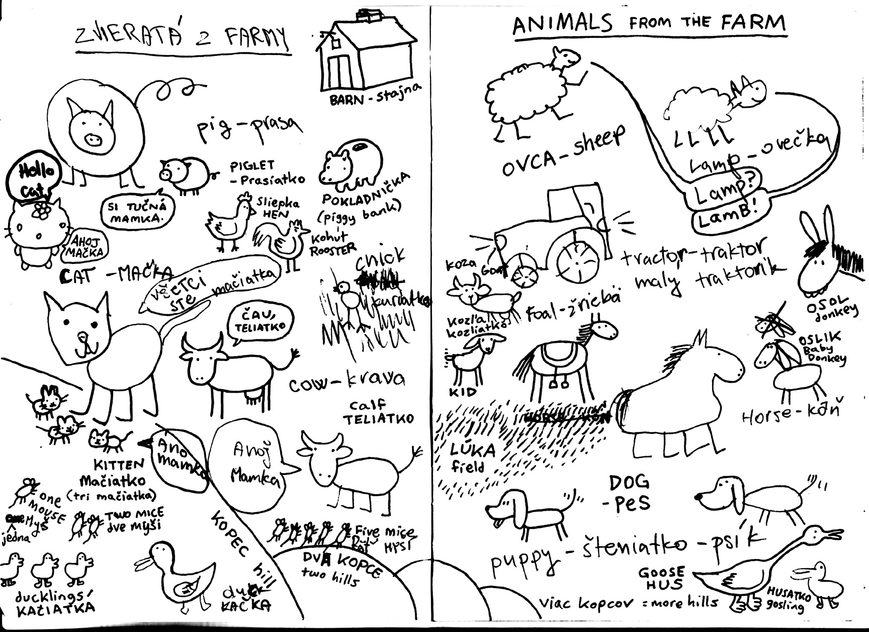 Notebook Animals From Farm Coffee Dumpling Komiks