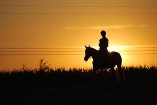 OFFERTA Passeggiata a cavallo Duska in Maremma a Sorano