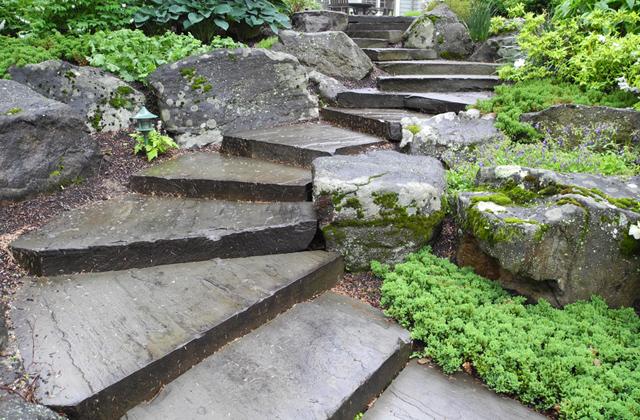 Front Concrete Step Yard Ideas