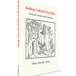 building cathedrals not walls