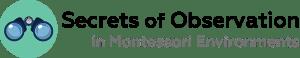 Montessori teacher workshop observation