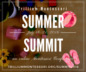 Montessori Summer Summit