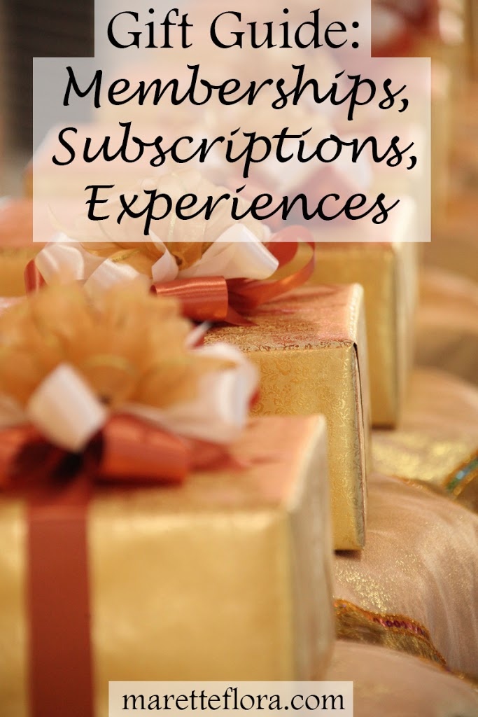 Fun Subscription, Membership and Experience Gifts