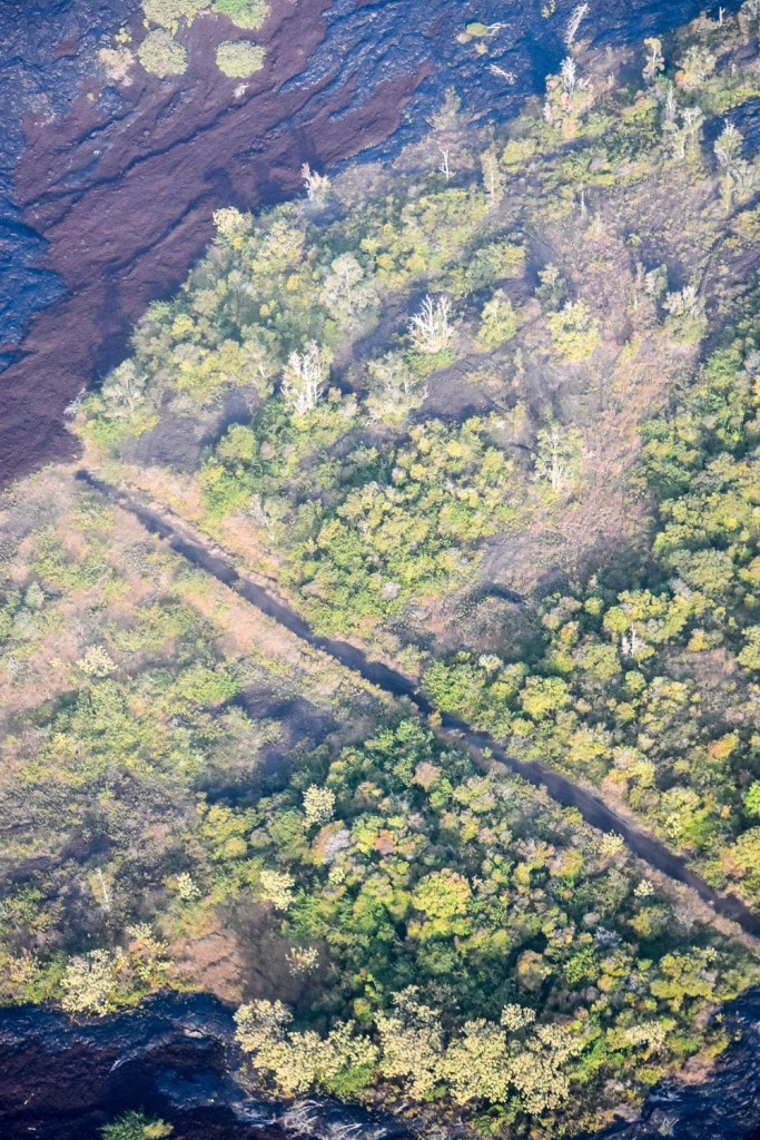 Old Hawaii Road Cut Off By Lava