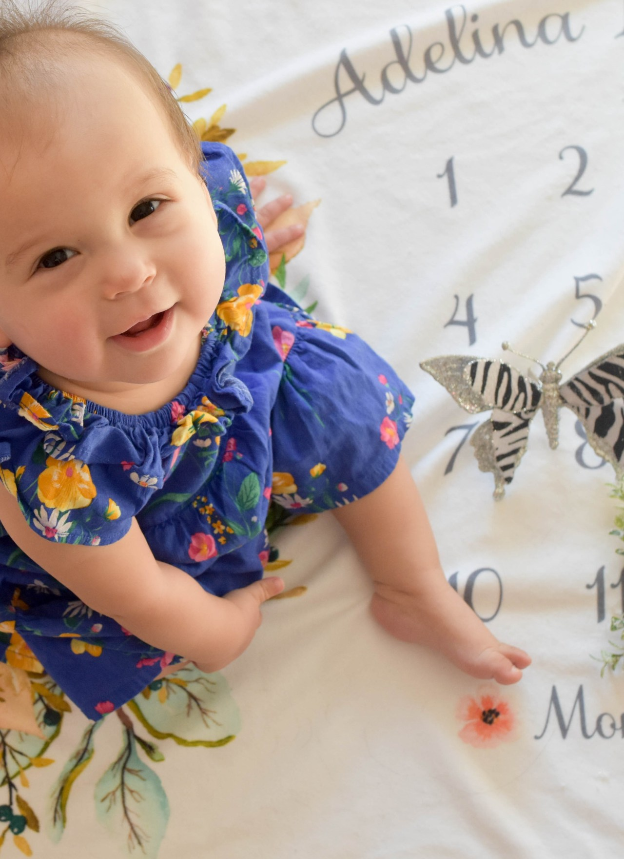 Adelina's 12-Month Update