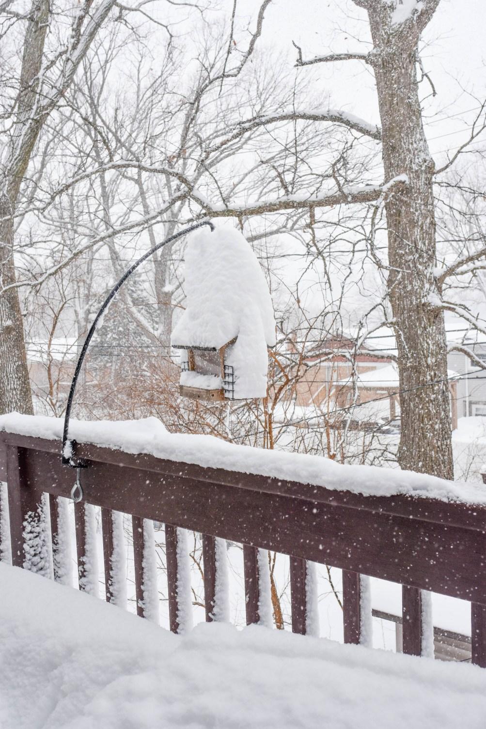 January 2021 Chicago Snowstorm Photo Diary
