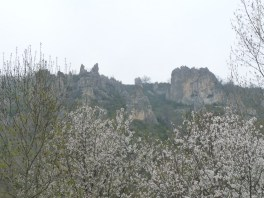 Craggy peaks above the blossom