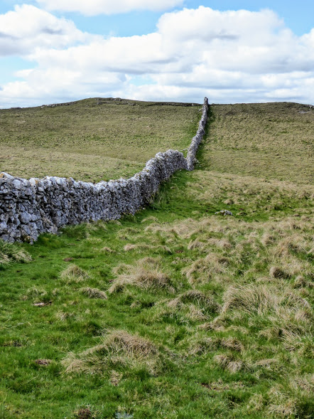 A wall wanders off into the distance near Grassington.