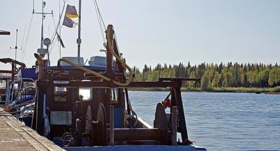 Utan fiskebåten, ingen löjrom