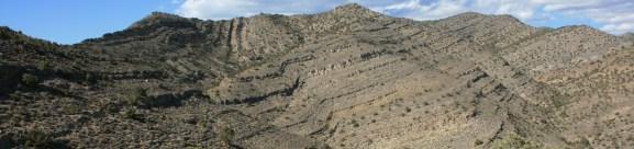 Spathian Virgin Limestone Member, Nevada.