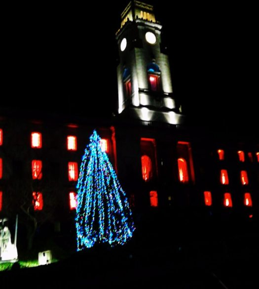 The tower of the Town Hall in silver and the Christmas tree in blue - a really Bright Night !