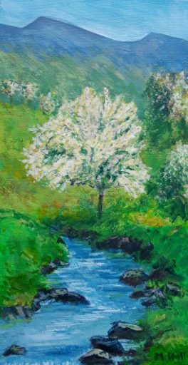A tree in full creamy white blossom in the  Welsh hills , a springtime landscape painting.
