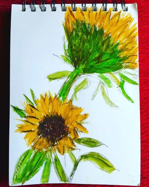 Two sunflower heads in watercolour- yellow and green