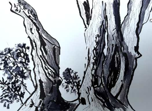 I love trees - I really enjoyed sketching with a thick pen, fineliner and watercolour wash to create this close up of an old massive tree trunk