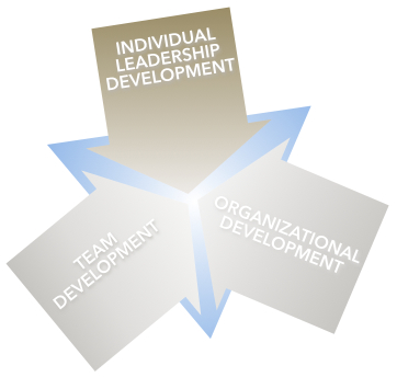 Margaret Holtzman, LLC offers Individual Leadership Development