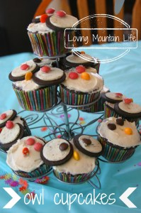 Owl Cupcakes Loving Mountain Life