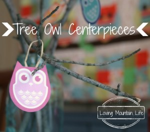 Tree Owl Centerpieces Loving Mountain Life