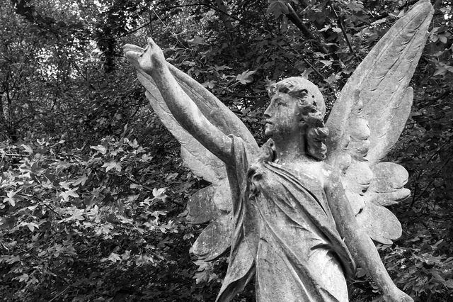 Highgate Cemetery East 12 (angel) by MrT HK