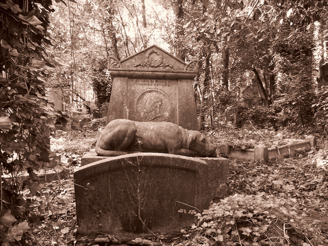 Highgate cemetery west thomas sayers London 205 by David Holt