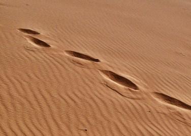 Foot Prints in Sand Flickr.com