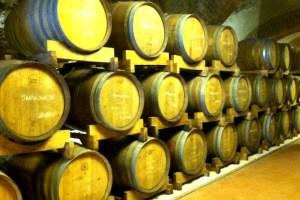 Wine Barrels in Tuscany Photo by Margie Miklas