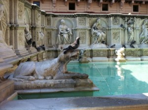 Fonte Gaia in Siena Photo by Margie Miklas