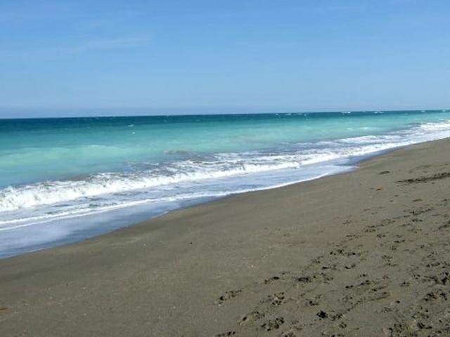 Beach Hutchinson Island, Florida Photo by Margie Miklas