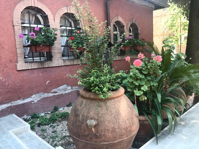Rome flowerpots Photo by Margie Miklas