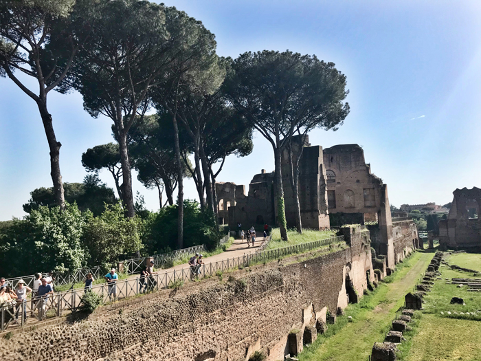 Rome Circus Maximus and Umbrella Pines Photo by Margie Miklas