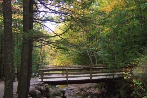 New England in the fall - Photo by Margie Miklas