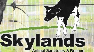 skylandfarm