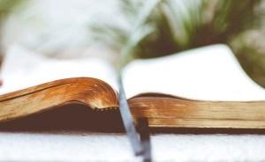 King James Bible, New Living Translation NLT