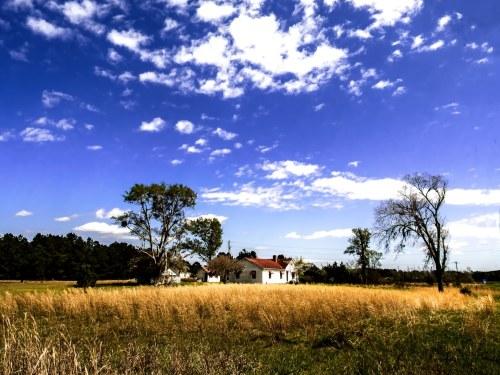 """Deep in the County"" Photo by Margo Millure ((www.margomillurephotography.com))"