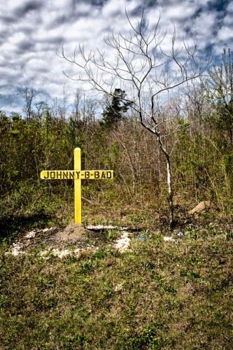 Johnny B. Bad by Margo Millure (margomillurephotography.com)