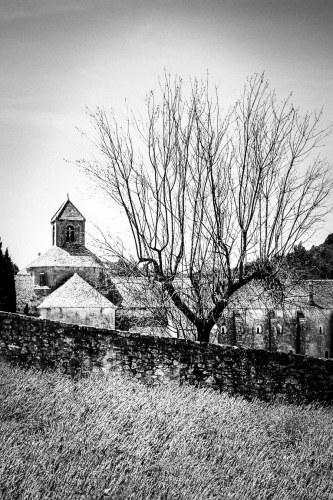 """Winter Provence"" Photo by Margo Millure (www.margomillurephotography.com)"