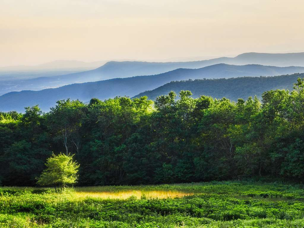 blue ridge mountains, shenandoah virginia