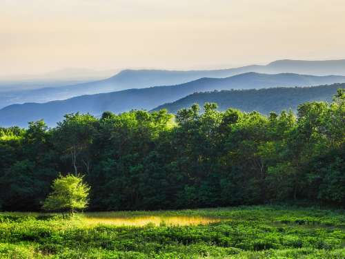 blue ridge mountains, shenandoah virginia