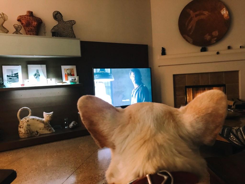 Pearl watching TV