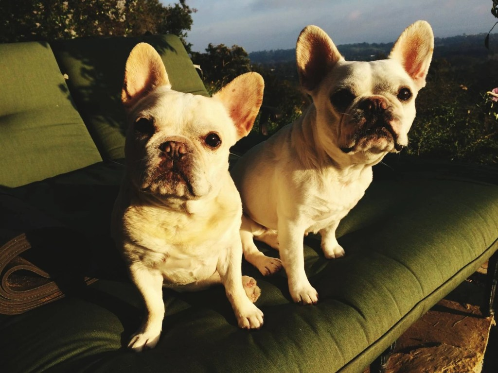 Gurdie and Pearl