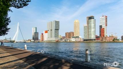 Rotterdam - Uitzicht op de Erasmusbrug en Kop van Zuid